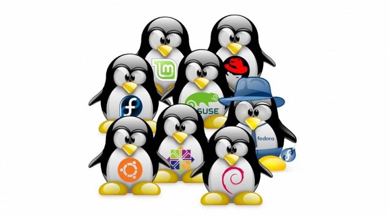 بررسی سیستم عامل های لینوکس
