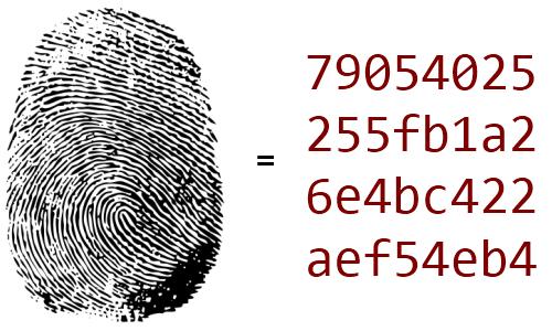 Hash Code و کاربردی های آن