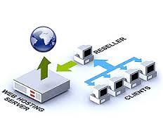 سرویس های میزبانی وب یا Web Hosting