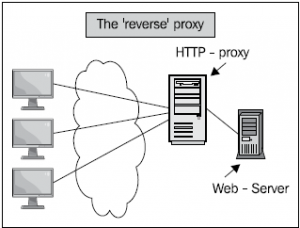 نصب و کانفیگ nginx به عنوان reverse proxy