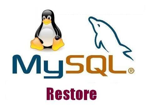 ریستور کردن فایل های حجیم دیتابیس MySQL