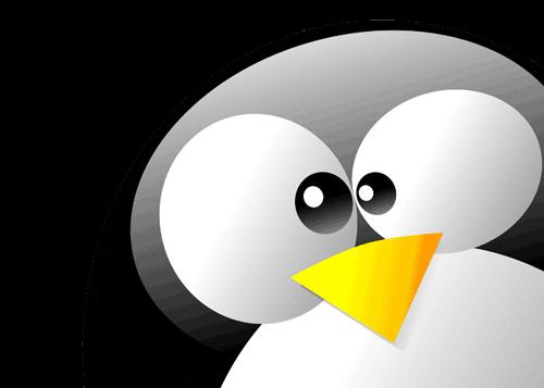 آموزش تنظیمات Network Interface برای لینوکس